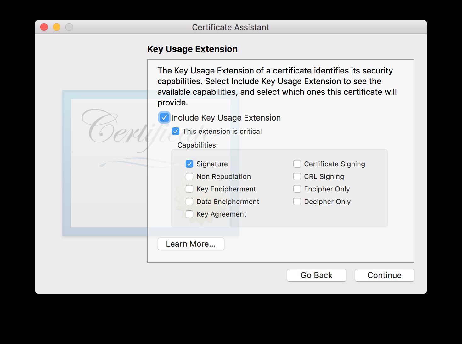 Key Usage Extension